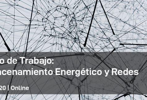 3er Grupo de Trabajo de Almacenamiento Energético y Redes