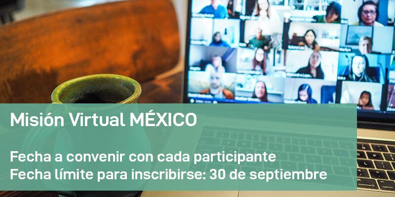Misión Virtual MÉXICO