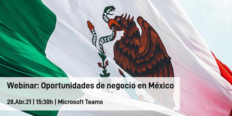 Webinar: Oportunidades de negocio en México