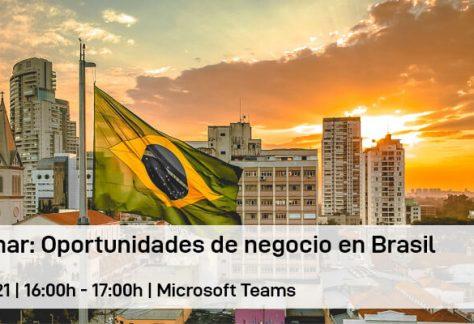 Webinar: Oportunidades de negocio en Brasil